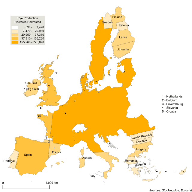 Cartogram map of rye production in the European Union